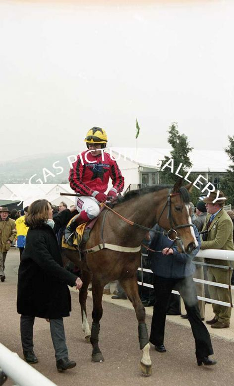Racehorse Blazing Bailey with Jockey Robert Thornton